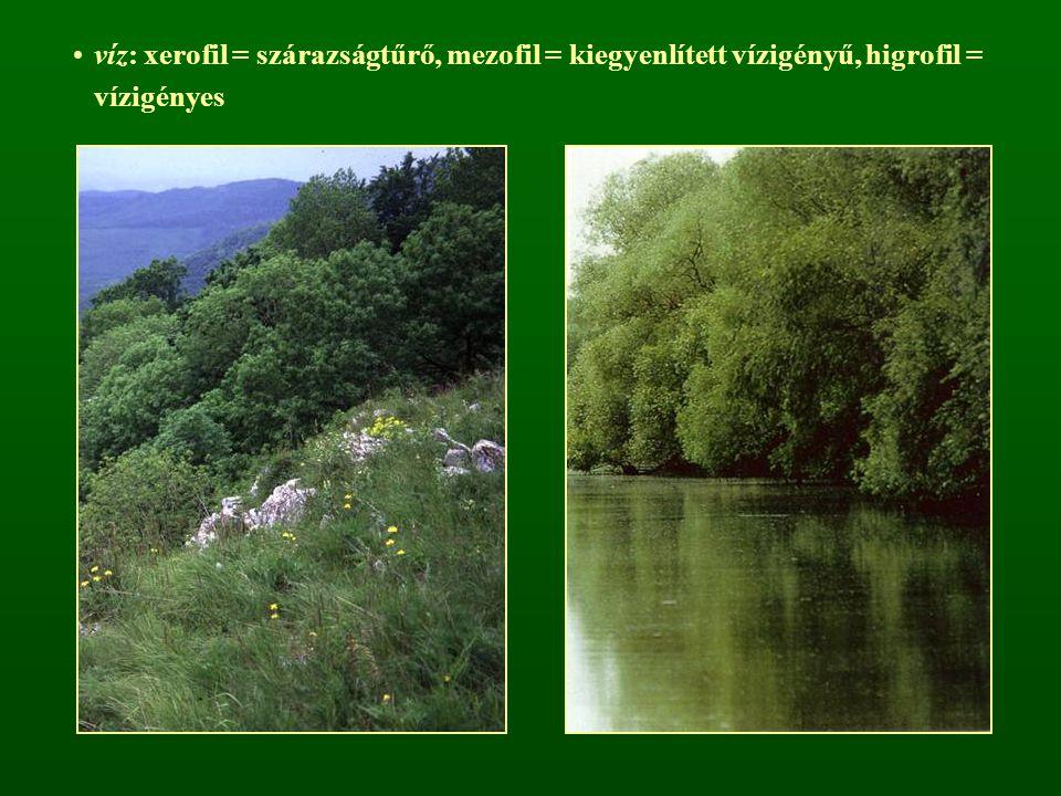 víz: xerofil = szárazságtűrő, mezofil = kiegyenlített vízigényű, higrofil = vízigényes