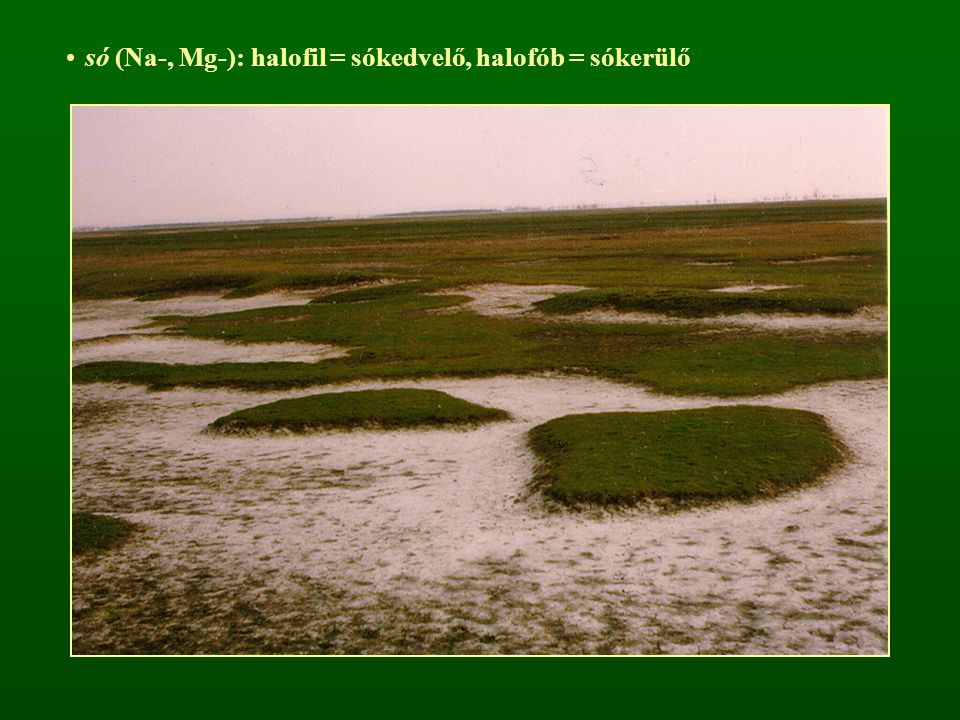 só (Na-, Mg-): halofil = sókedvelő, halofób = sókerülő