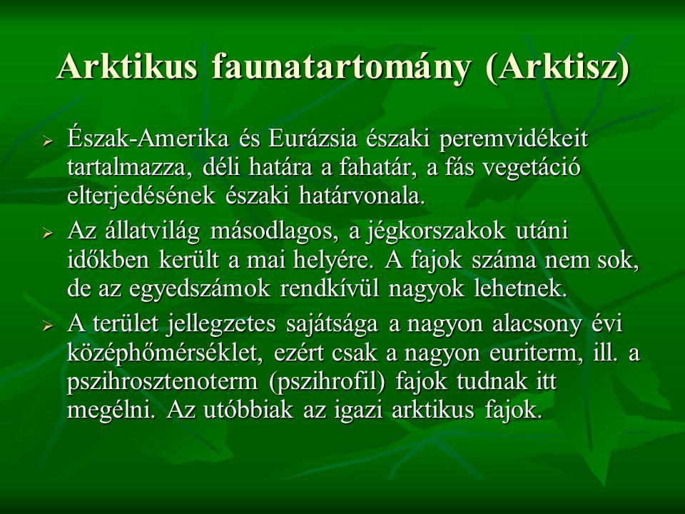 Arktikus faunatartomány (Arktisz)