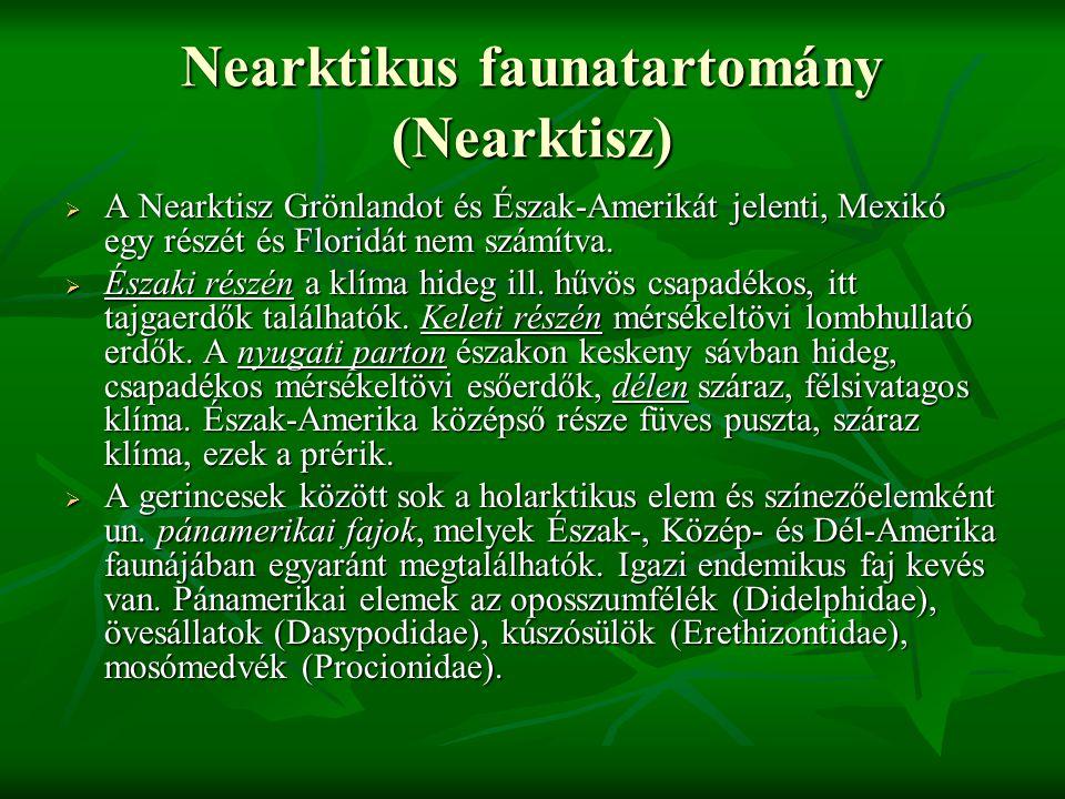 Nearktikus faunatartomány (Nearktisz)