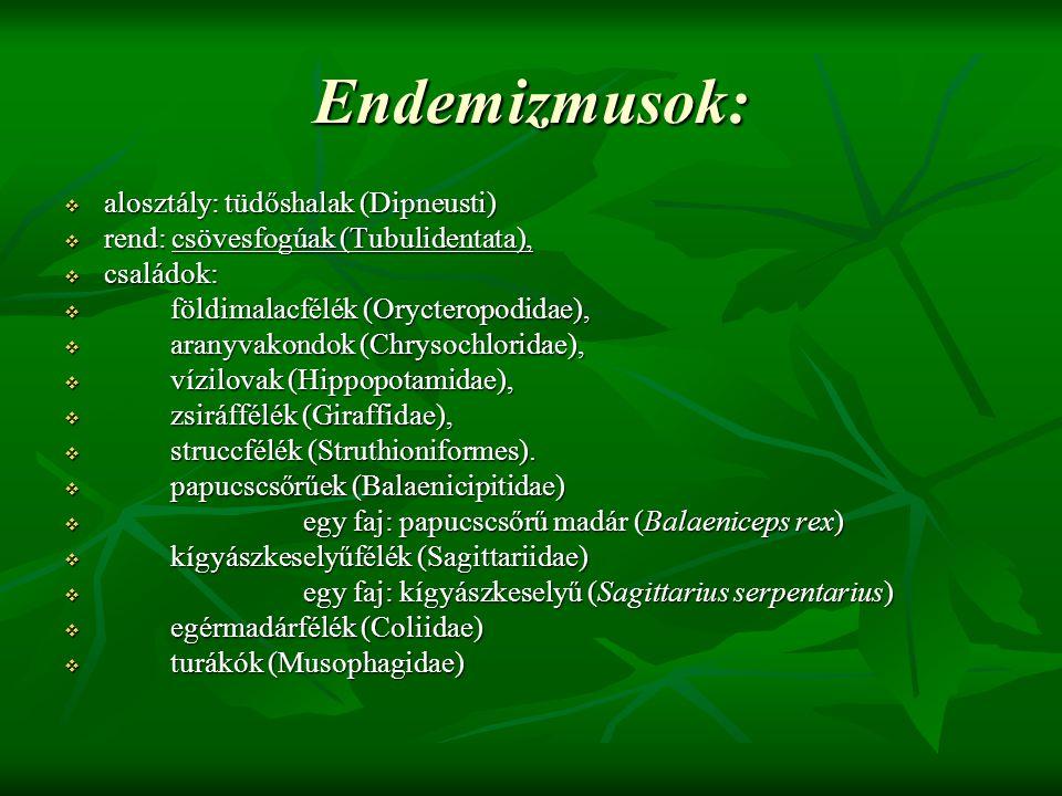 Endemizmusok: alosztály: tüdőshalak (Dipneusti)