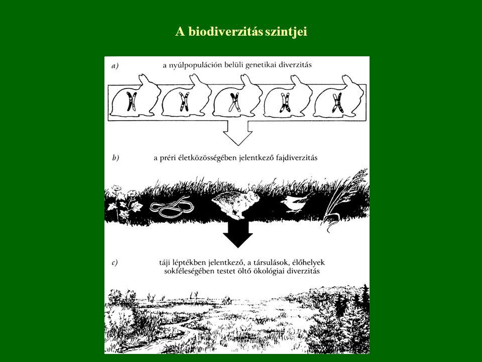 A biodiverzitás szintjei