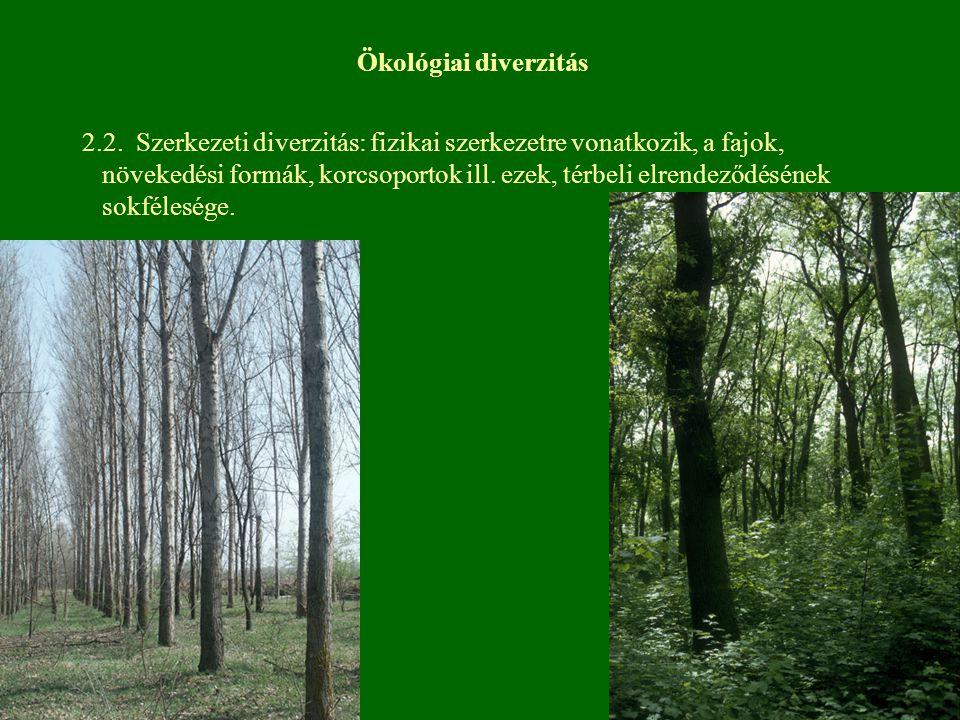 Ökológiai diverzitás