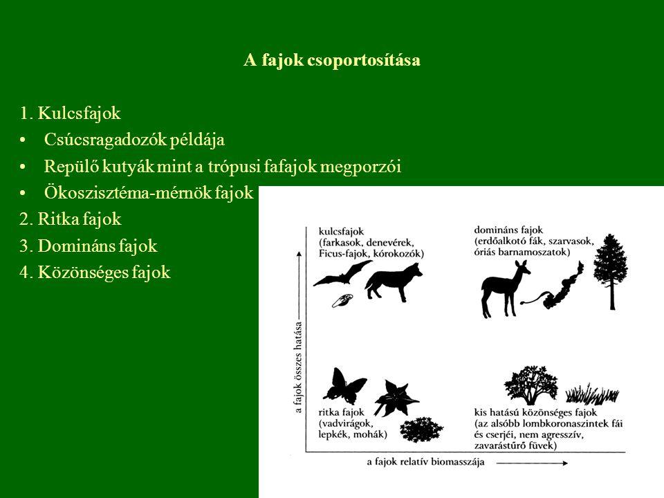 A fajok csoportosítása