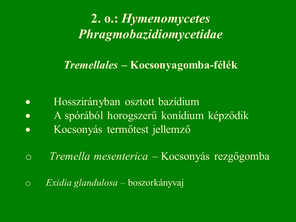 Phragmobazidiomycetidae Tremellales – Kocsonyagomba-félék