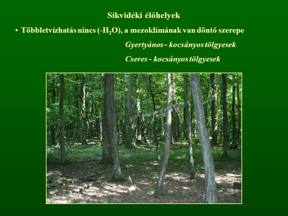 Síkvidéki élőhelyek Többletvízhatás nincs (-H2O), a mezoklímának van döntő szerepe. Gyertyános - kocsányos tölgyesek.