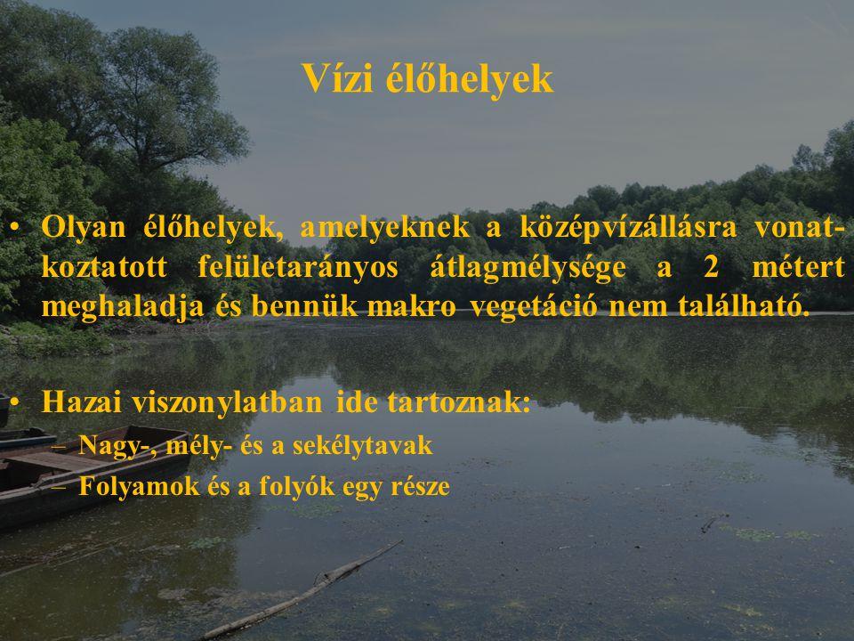 Vízi élőhelyek