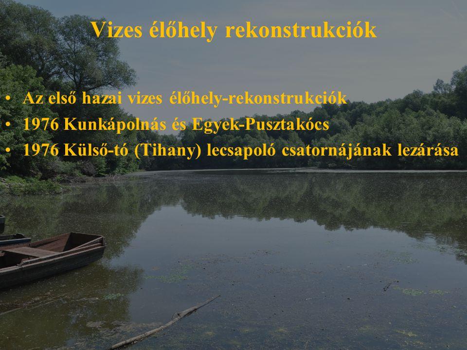 Vizes élőhely rekonstrukciók