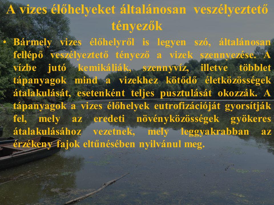 A vizes élőhelyeket általánosan veszélyeztető tényezők