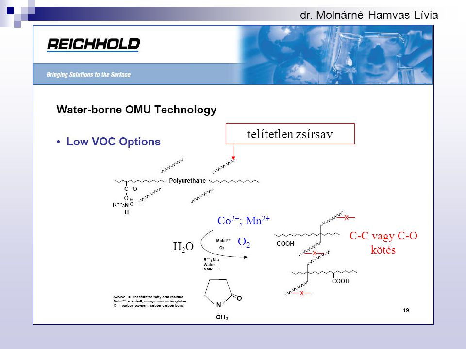 telítetlen zsírsav dr. Molnárné Hamvas Lívia Co2+; Mn2+ O2