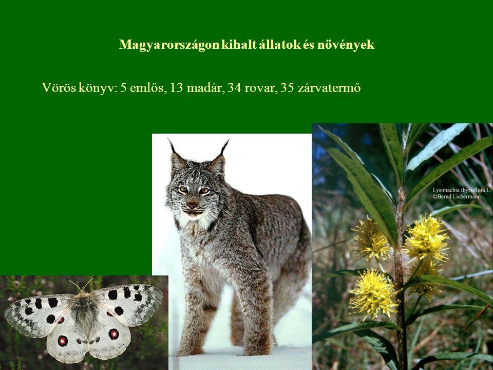 Magyarországon kihalt állatok és növények