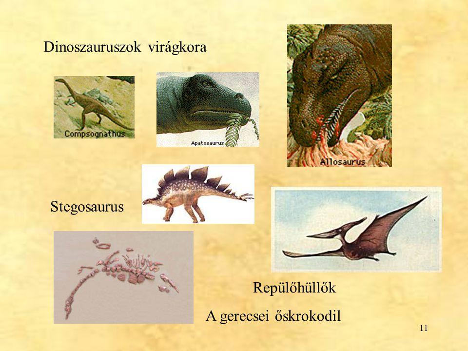 Dinoszauruszok virágkora