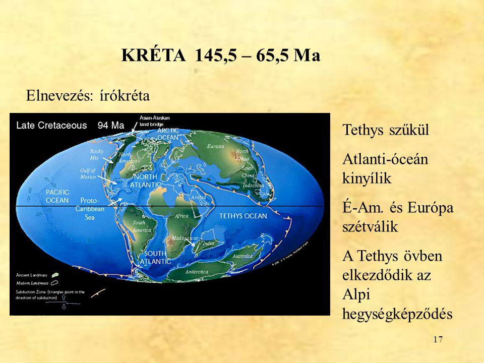 KRÉTA 145,5 – 65,5 Ma Elnevezés: írókréta Tethys szűkül