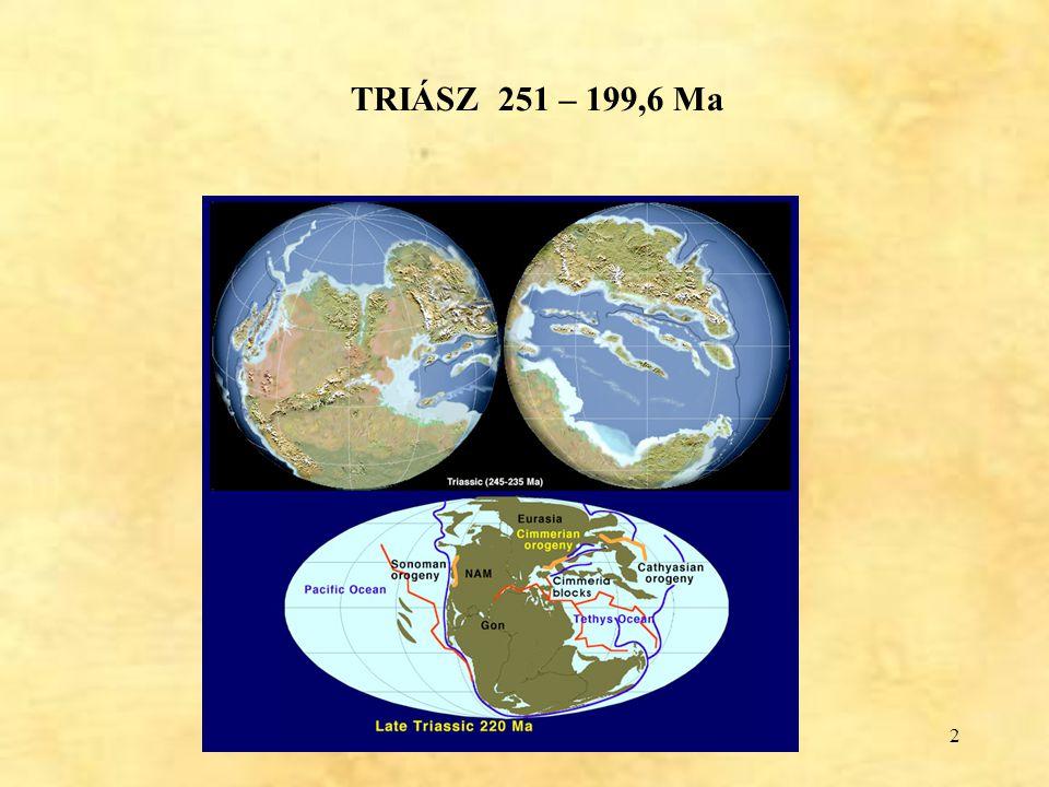 TRIÁSZ 251 – 199,6 Ma