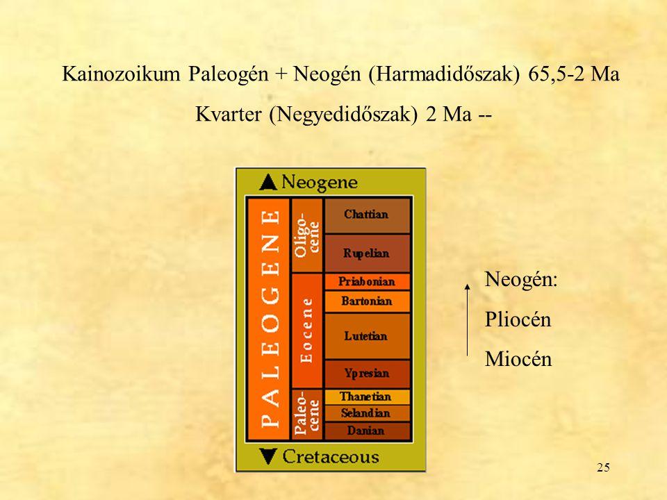 Kainozoikum Paleogén + Neogén (Harmadidőszak) 65,5-2 Ma
