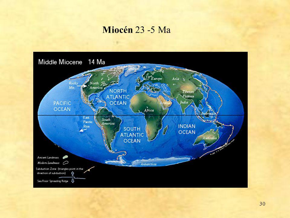 Miocén 23 -5 Ma