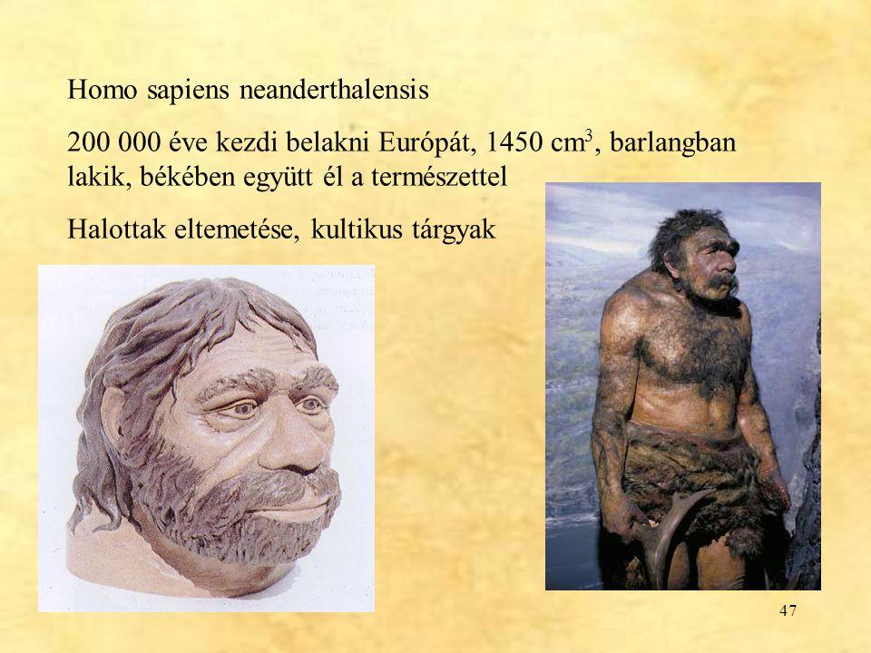 Homo sapiens neanderthalensis