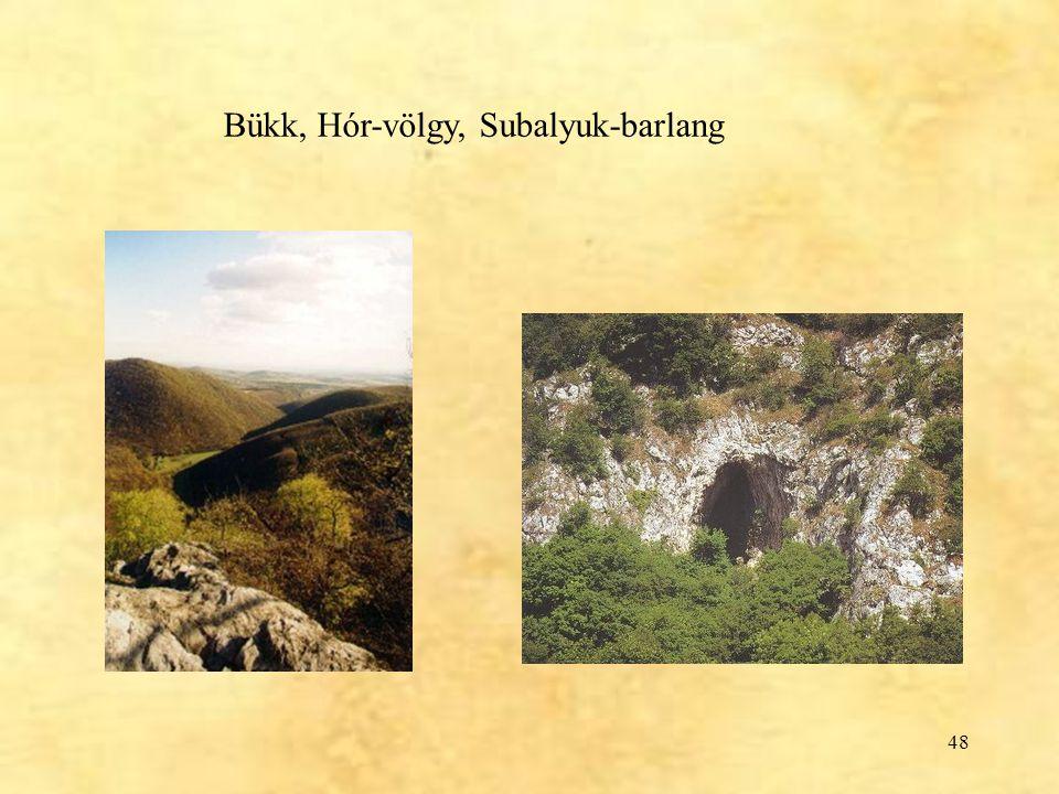 Bükk, Hór-völgy, Subalyuk-barlang