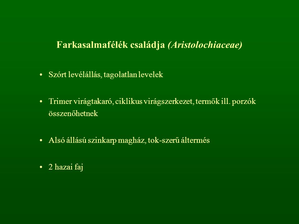 Farkasalmafélék családja (Aristolochiaceae)