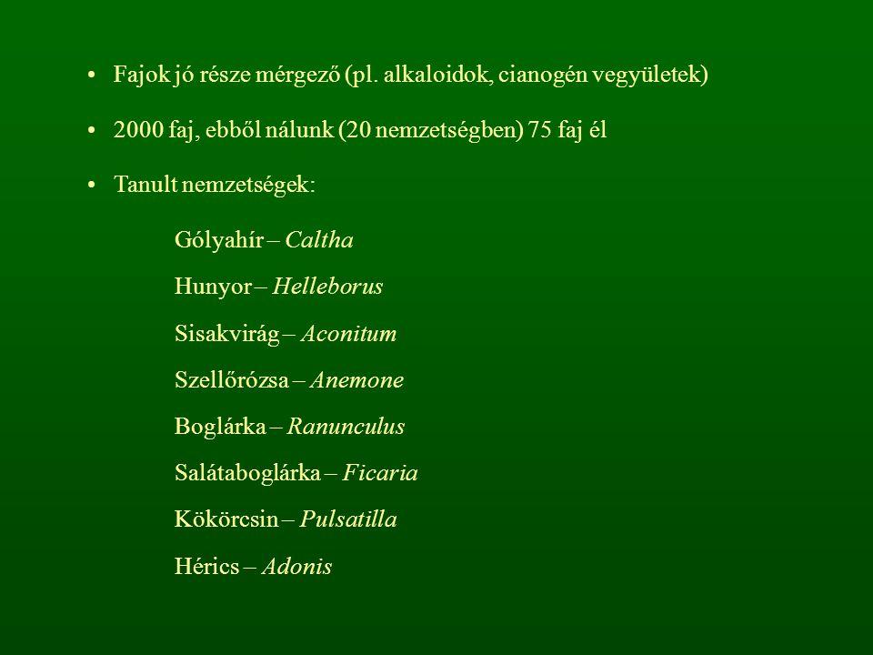 Fajok jó része mérgező (pl. alkaloidok, cianogén vegyületek)