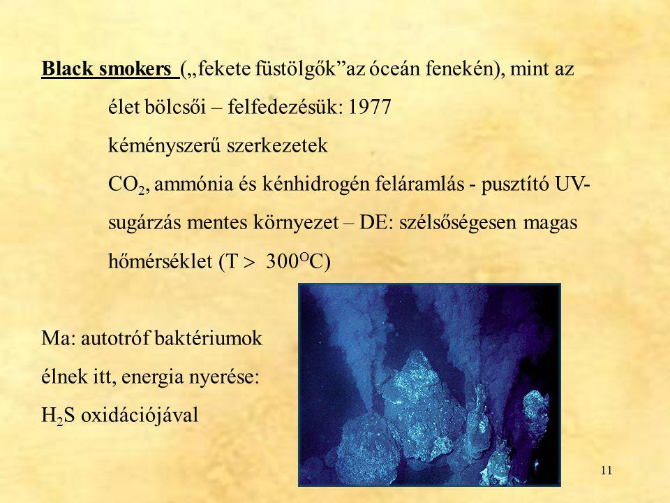 """Black smokers (""""fekete füstölgők az óceán fenekén), mint az"""