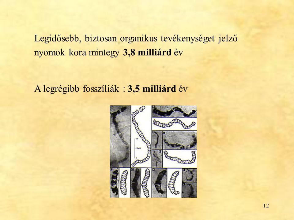 Legidősebb, biztosan organikus tevékenységet jelző nyomok kora mintegy 3,8 milliárd év