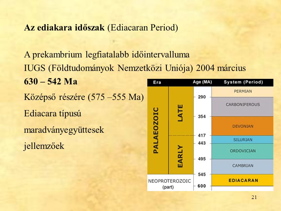 Az ediakara időszak (Ediacaran Period)