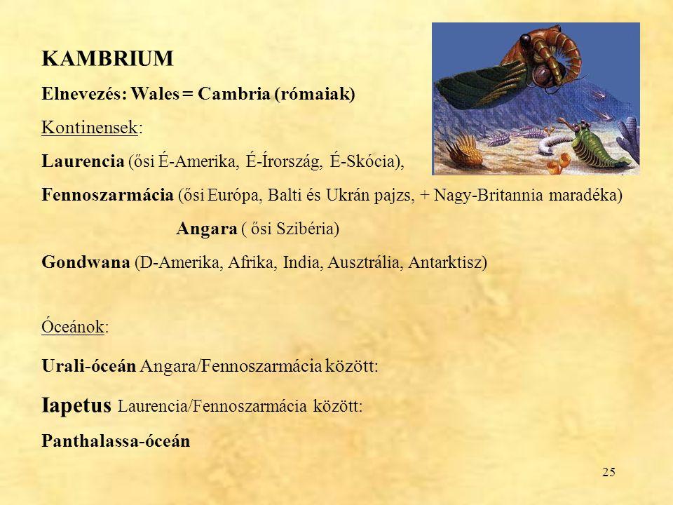 Iapetus Laurencia/Fennoszarmácia között: