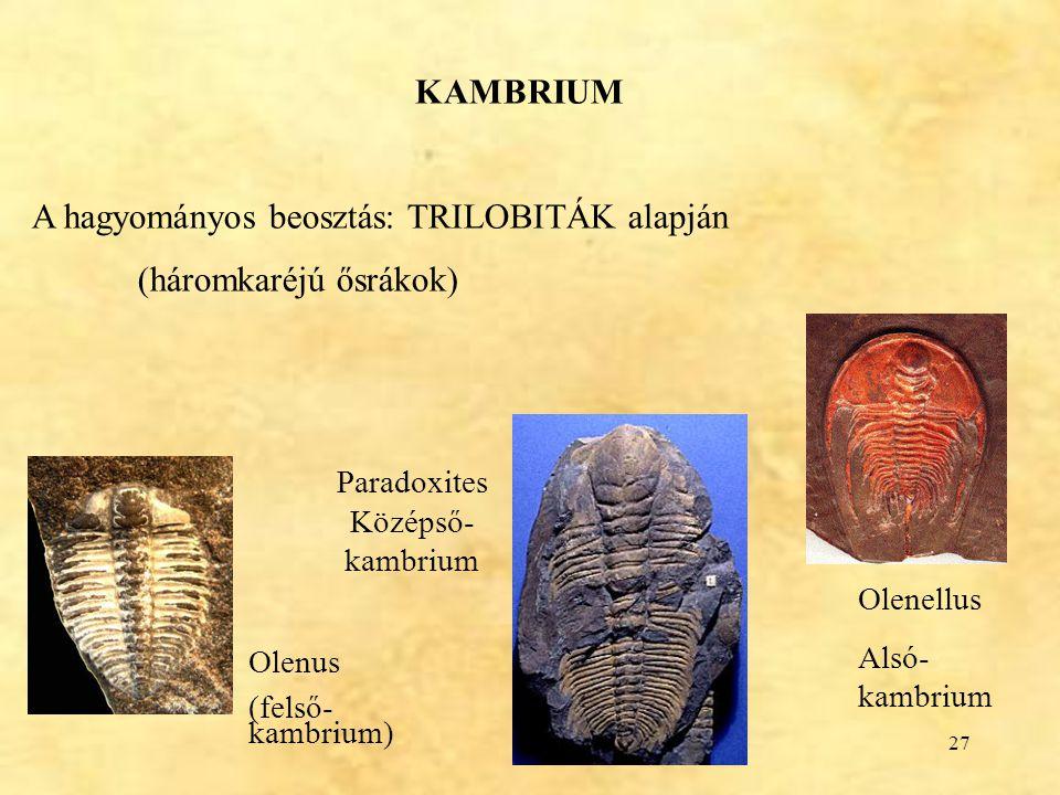 A hagyományos beosztás: TRILOBITÁK alapján (háromkaréjú ősrákok)