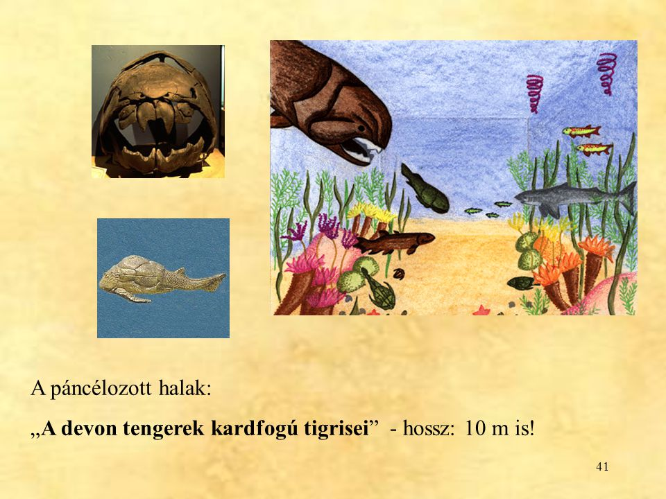 """A páncélozott halak: """"A devon tengerek kardfogú tigrisei - hossz: 10 m is!"""