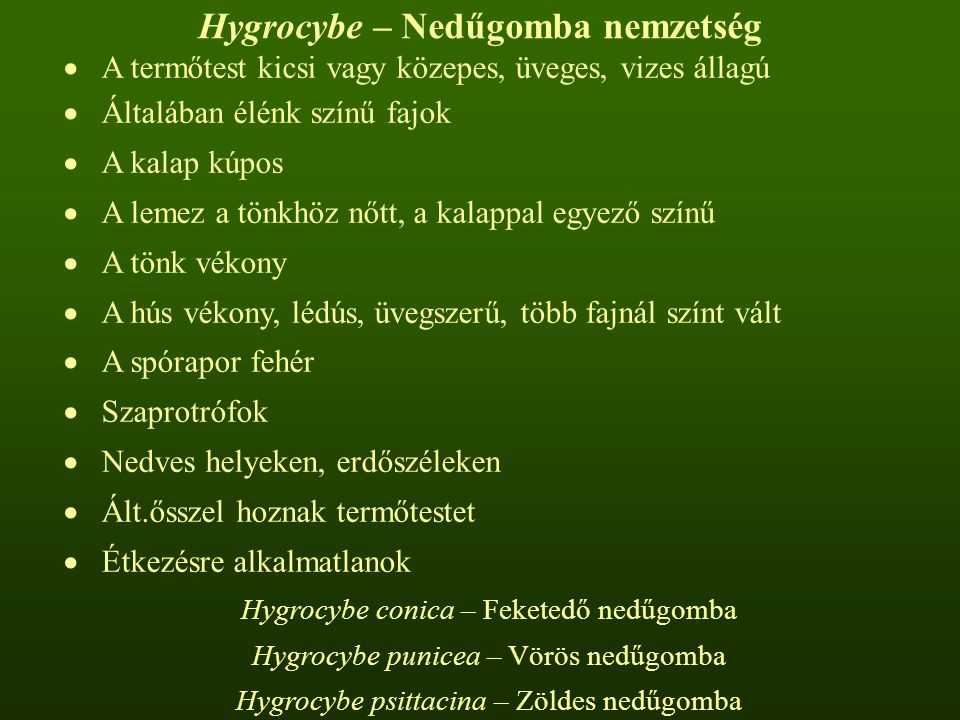 Hygrocybe – Nedűgomba nemzetség