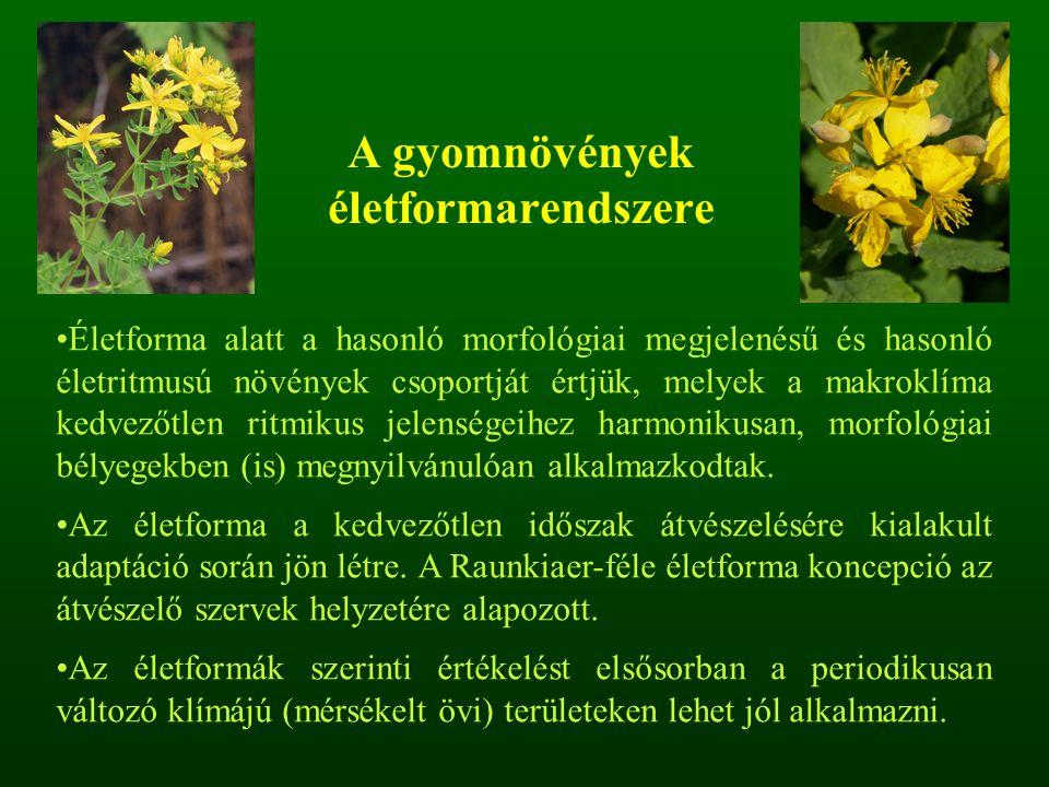A gyomnövények életformarendszere