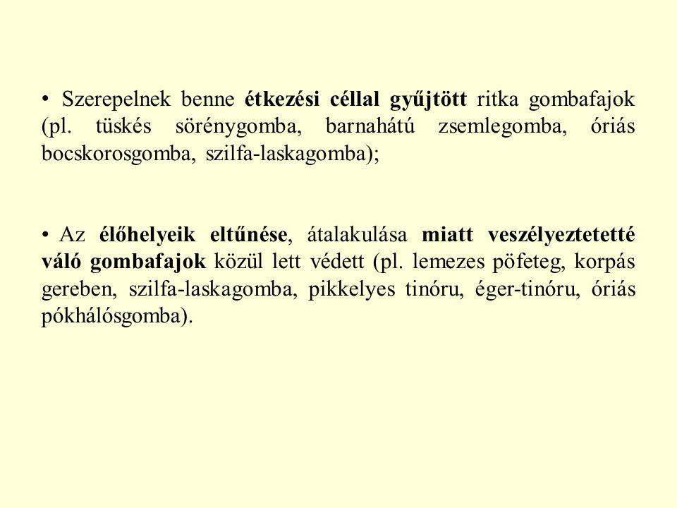Szerepelnek benne étkezési céllal gyűjtött ritka gombafajok (pl
