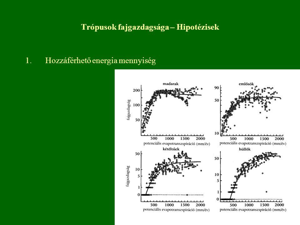 Trópusok fajgazdagsága – Hipotézisek