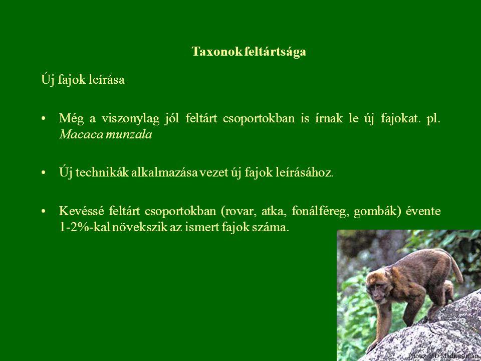 Taxonok feltártsága Új fajok leírása. Még a viszonylag jól feltárt csoportokban is írnak le új fajokat. pl. Macaca munzala.