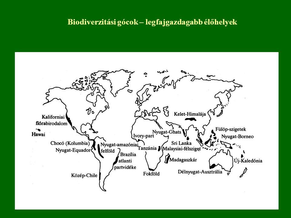 Biodiverzitási gócok – legfajgazdagabb élőhelyek