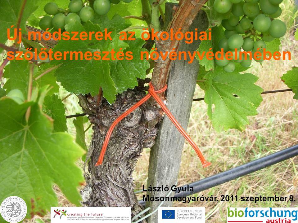 Új módszerek az ökológiai szőlőtermesztés növényvédelmében