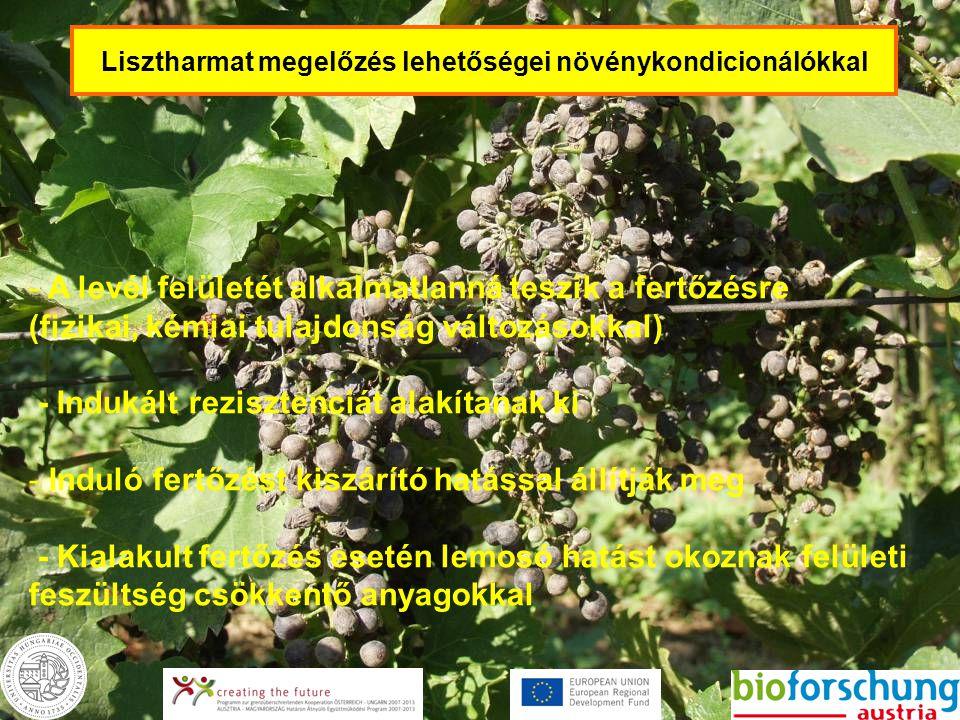 Lisztharmat megelőzés lehetőségei növénykondicionálókkal