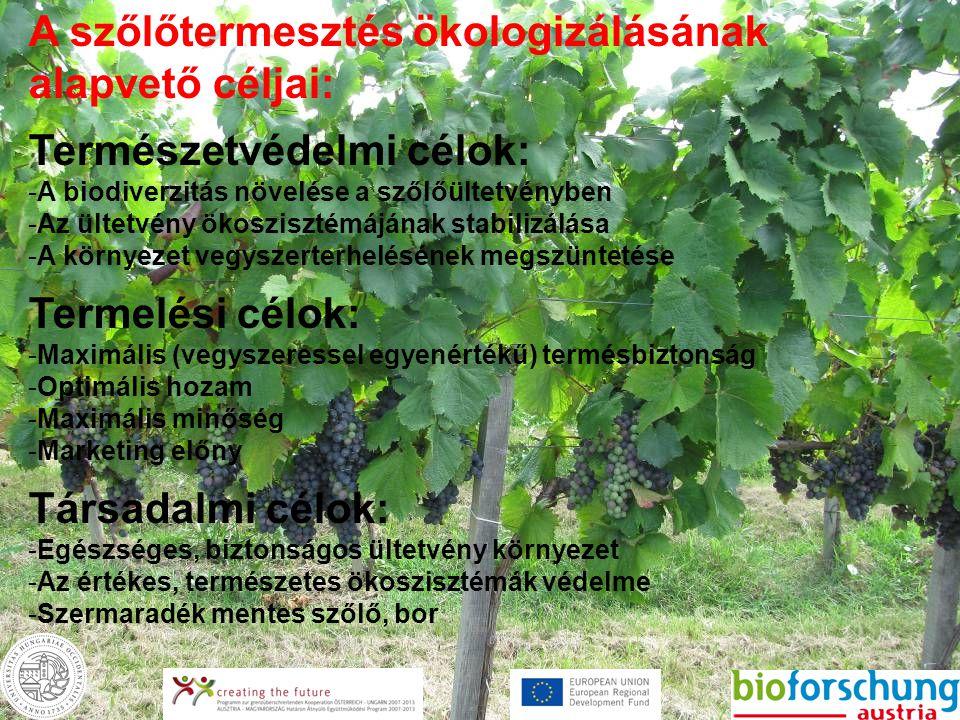 A szőlőtermesztés ökologizálásának alapvető céljai: