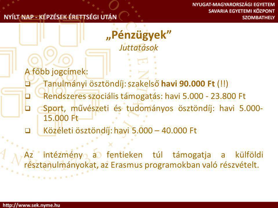Tanulmányi ösztöndíj: szakelső havi 90.000 Ft (!!)