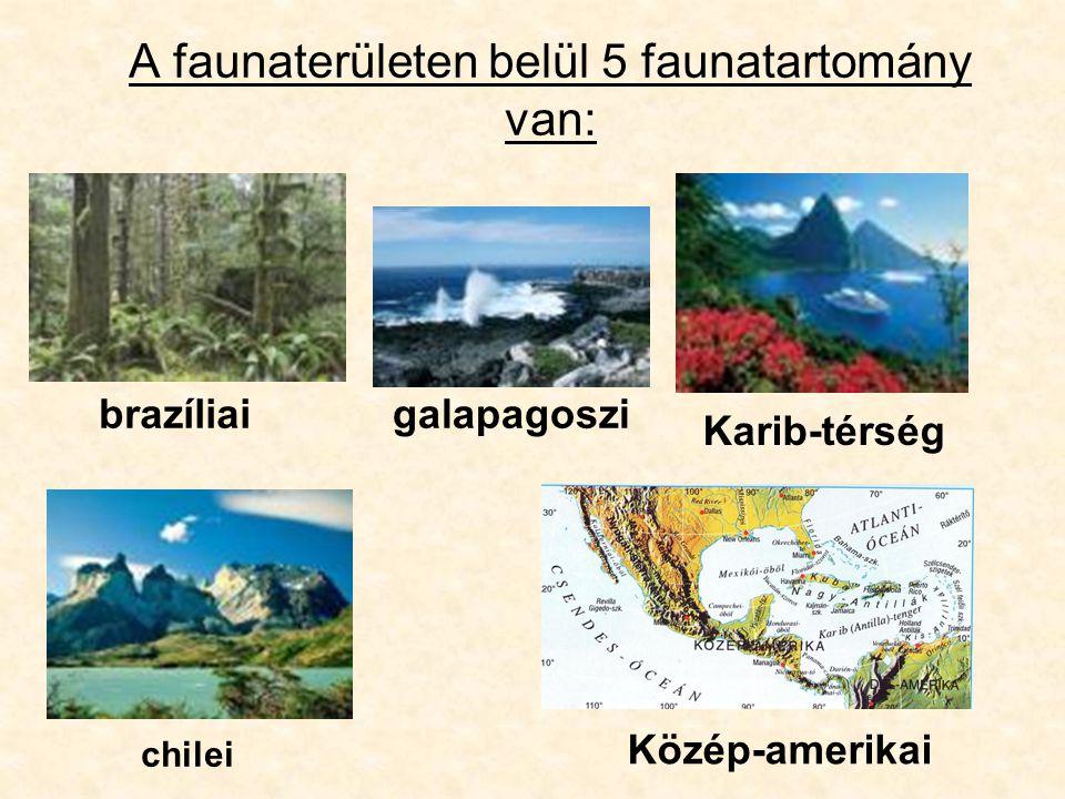 A faunaterületen belül 5 faunatartomány van: