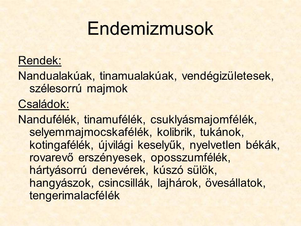 Endemizmusok Rendek: Nandualakúak, tinamualakúak, vendégizületesek, szélesorrú majmok. Családok: