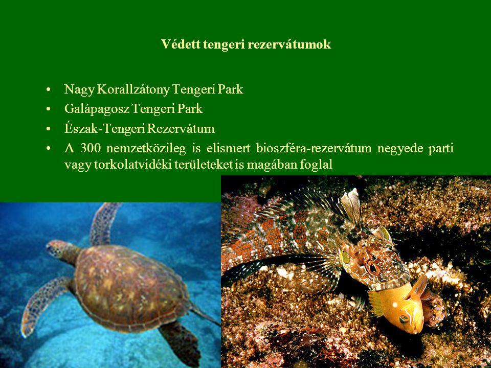 Védett tengeri rezervátumok
