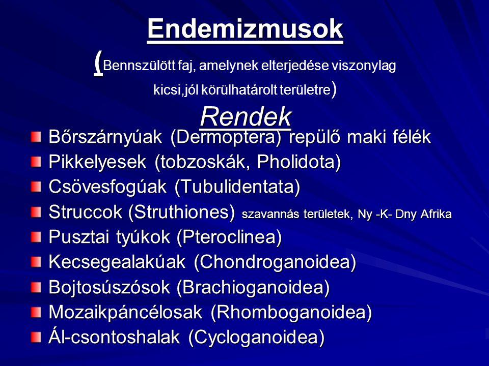 Endemizmusok (Bennszülött faj, amelynek elterjedése viszonylag kicsi,jól körülhatárolt területre) Rendek