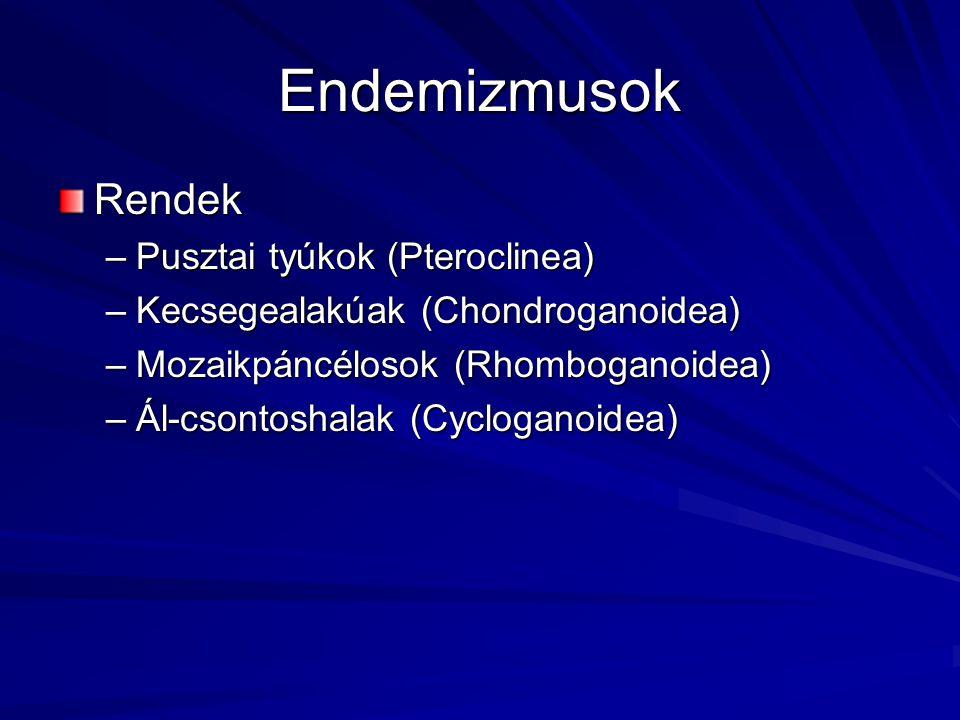 Endemizmusok Rendek Pusztai tyúkok (Pteroclinea)