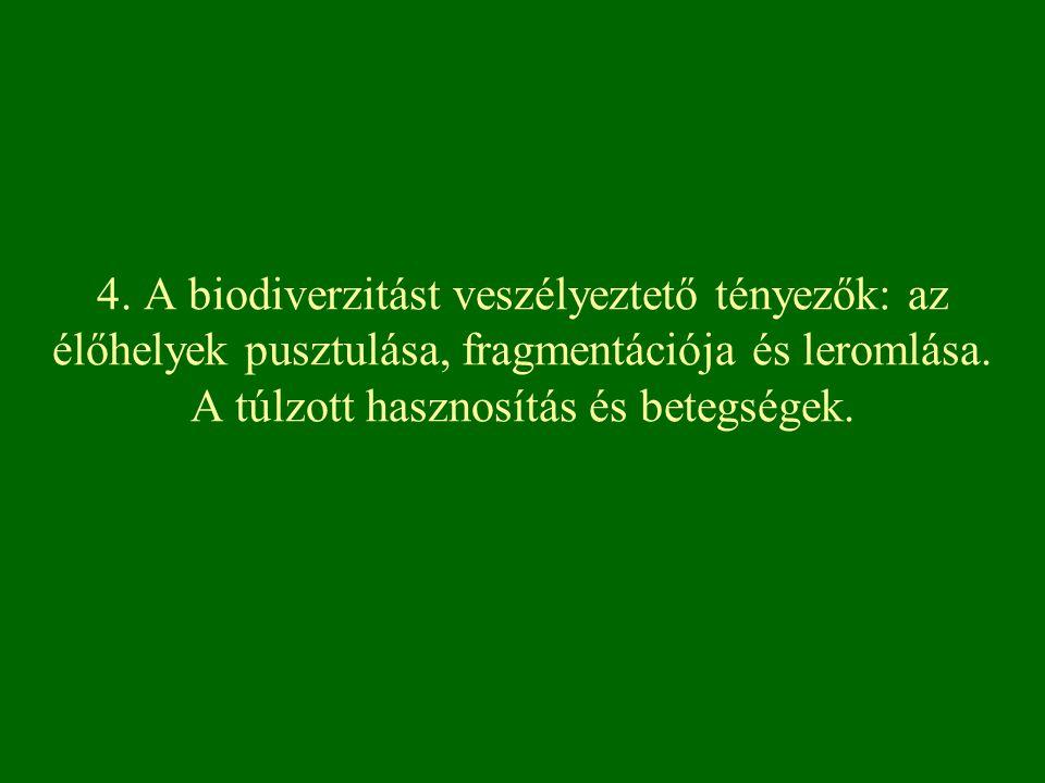 4. A biodiverzitást veszélyeztető tényezők: az élőhelyek pusztulása, fragmentációja és leromlása.