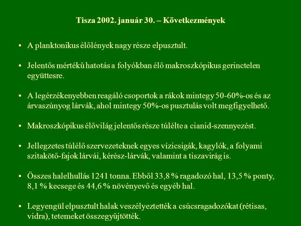 Tisza 2002. január 30. – Következmények