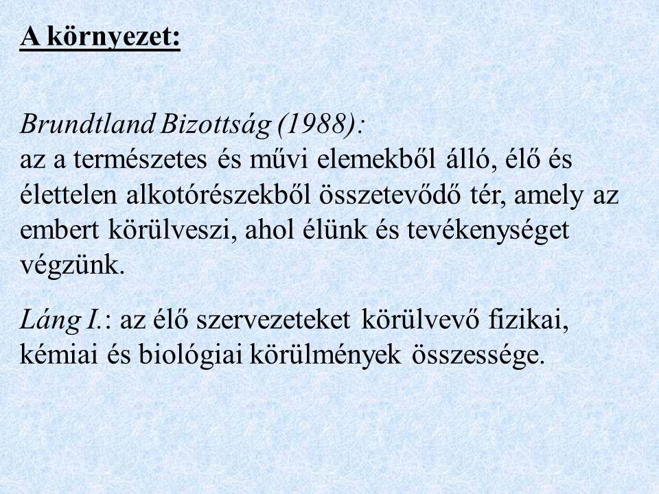 A környezet: Brundtland Bizottság (1988):