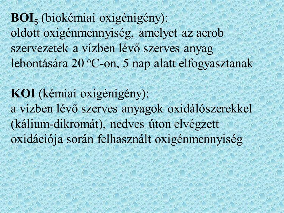 BOI5 (biokémiai oxigénigény):