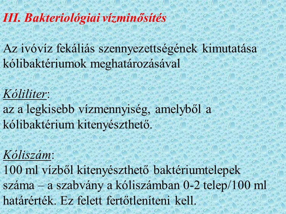 III. Bakteriológiai vízminősítés